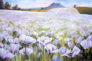 The opium poppies and pyrethrum create seas of white in Tassie in early summer. This painting shows Opium poppy fields near Deloraine with Quamby Bluff as a backdrop.