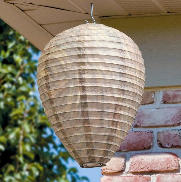 The garden party: Bee Free Wasp Deterrent