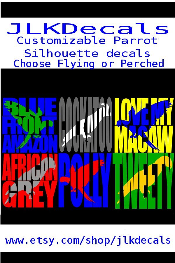 2 COLOR Personalized Window Graphic Vinyl Decal Sticker
