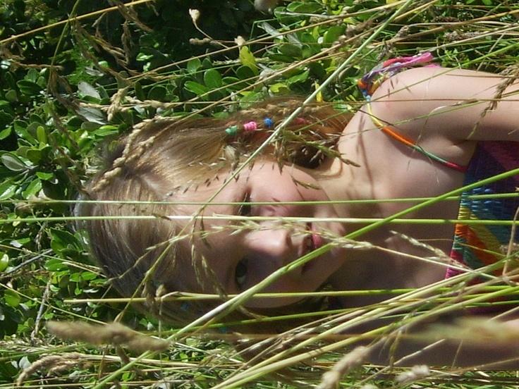 Violet i the grass Devonstock