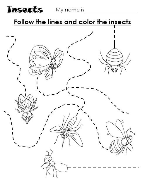 Schrijfpatroon insecten, free printable / Coordenação Motora