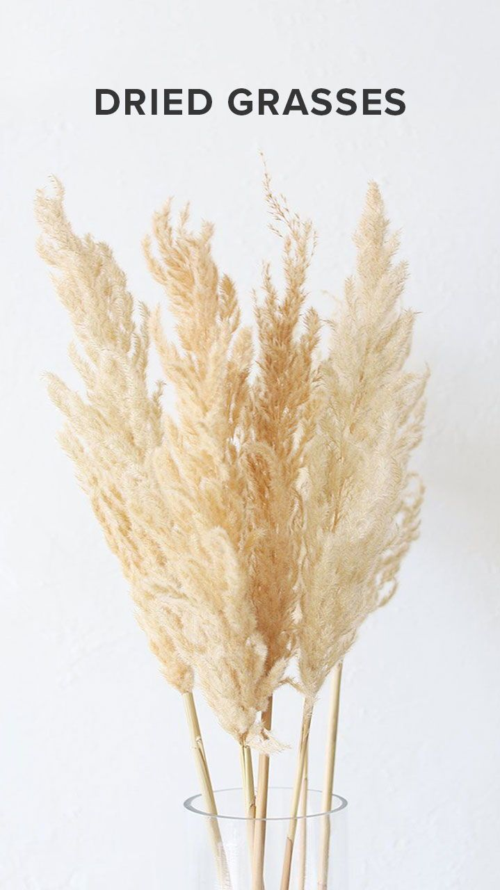 Art Deco Stil Duden Dried Grasses Pampas Grass And Greenery In 2019 Pampas
