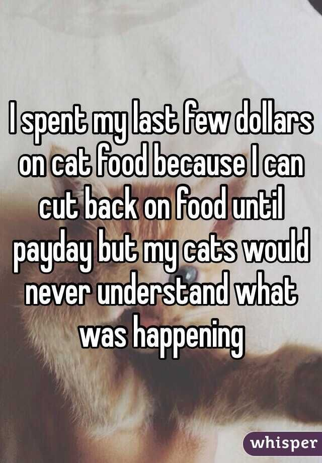 I spent my last few dollars on cat food because I can cut back on food until payday but my cats would never understand what was happening
