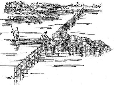 American Indian's History: Native American Fish Weirs