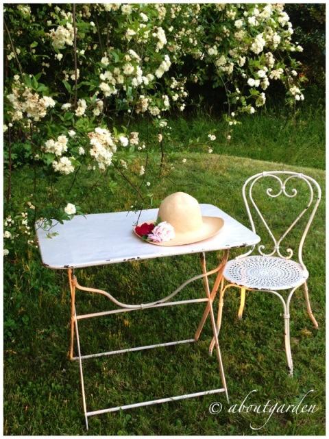 Garden Furniture Qvc 49 best spring fever images on pinterest | garden parties, flower