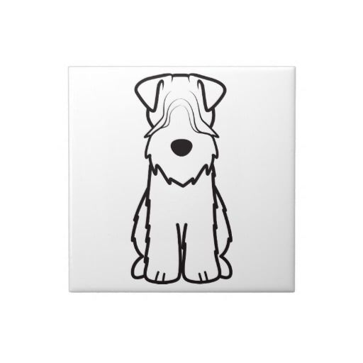 124 best Soft Coated Wheaten Terrier images on Pinterest | Wheaten ...