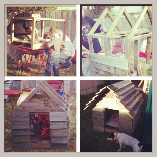 Recycled dog house. Pallet board base and   Fence materials for the frame and walls.