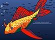 Compli Fish | Dress up games | Games for Girls | Monster High Games | Makeover games