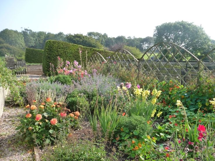 Explore the beautiful gardens at Higher Ash Farm, Dartmouth, open this Sunday for charity