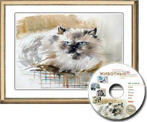 Гималайский Кот за 20 мин. акварелью