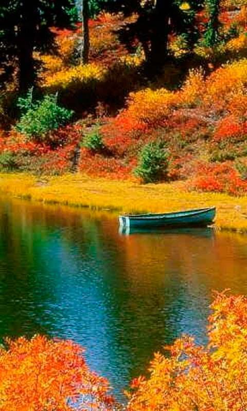 A boat on a peaceful lake