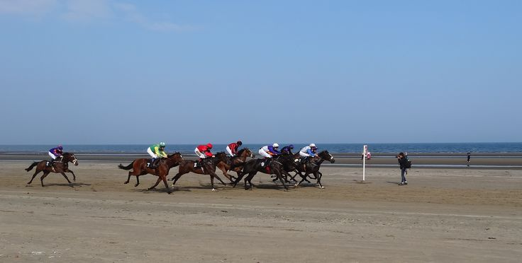 In the line of fire at Laytown Strand Races what a great shot.