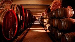 Винарниците исплатиле само 20 отсто од откупеното грозје