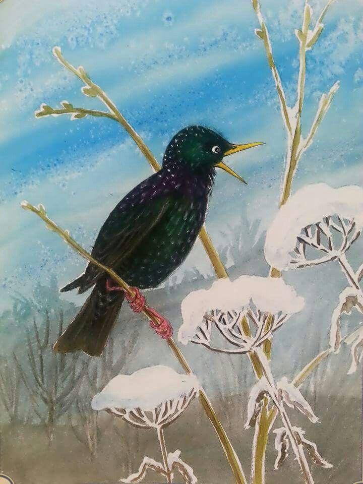 Seregély bird painting aquarell by Gábor Emese artist