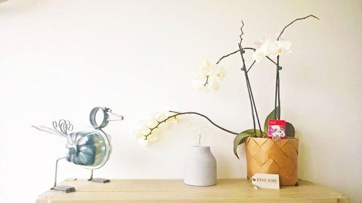 #gewoonmooi http://knapgoed.nl/product/geweven-mand-l/