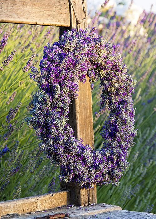 Wreath Of Lavender On A Wooden Bench Greeting Card for Sale by Anna-Mari West
