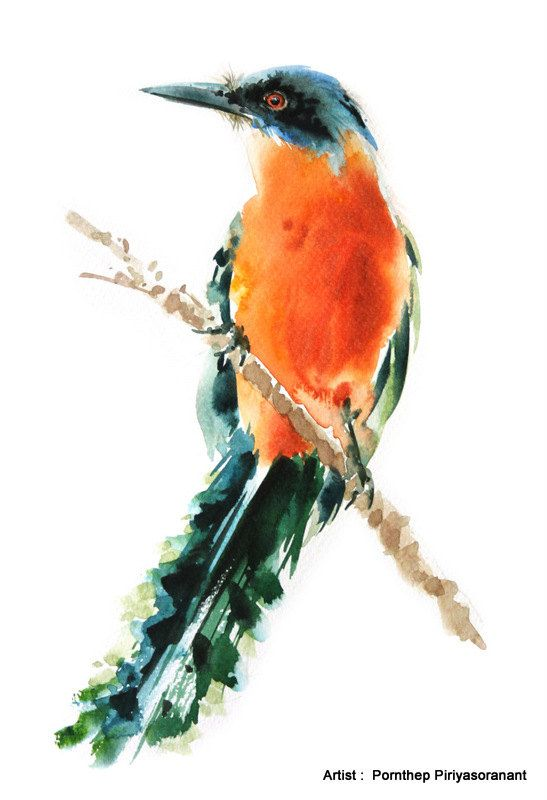 Bird Painting , Bird watercolor painting, watercolor, Bird print Art print size…
