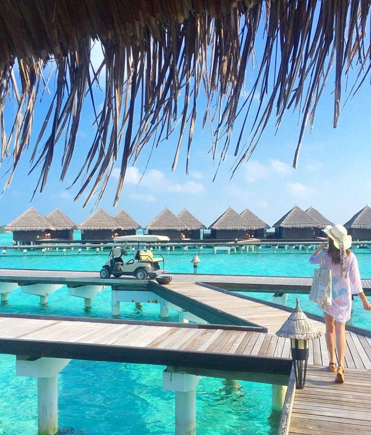Taj Exotica | Maldives Honeymoon | World of wanderlust ...