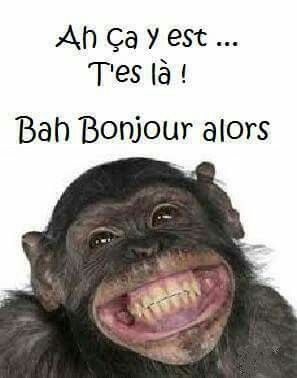 sourire humour