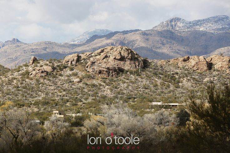 Tanque Verde Guest Ranch wedding | Lori OToole Photography |