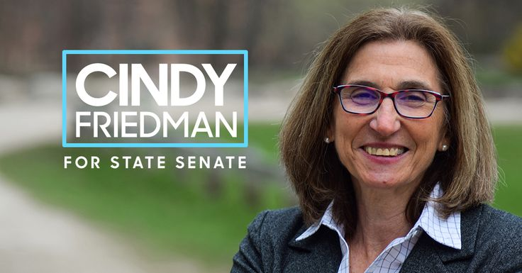 Cindy Friedman, for MA State Senate  Logo