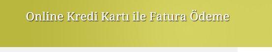 www.afaturaode.com elektrik faturası ödeme, fatura ödeme, elektrik borcu ödeme