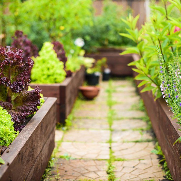 Allée de Jardin Quel matériau met le plus en valeur