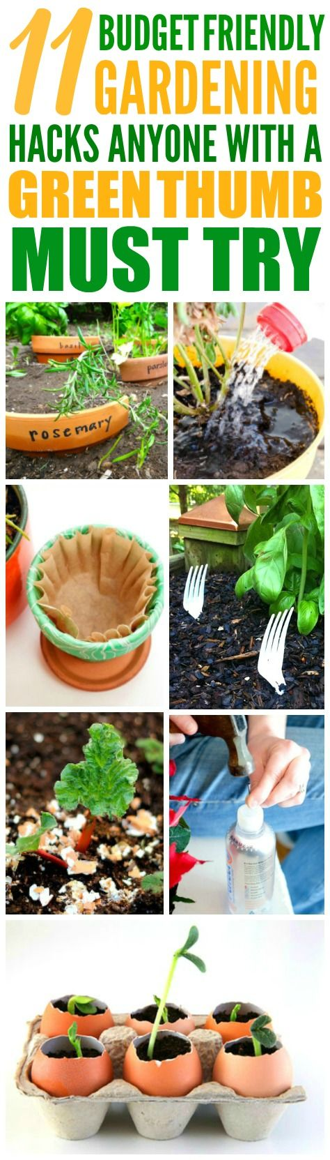These 11 Easy Gardening Hacks are THE BEST! I'm so happy I found these AMAZING gardening tips! Now I have a great way to frugally take care of my garden and keep it safe! Definitely pinning!