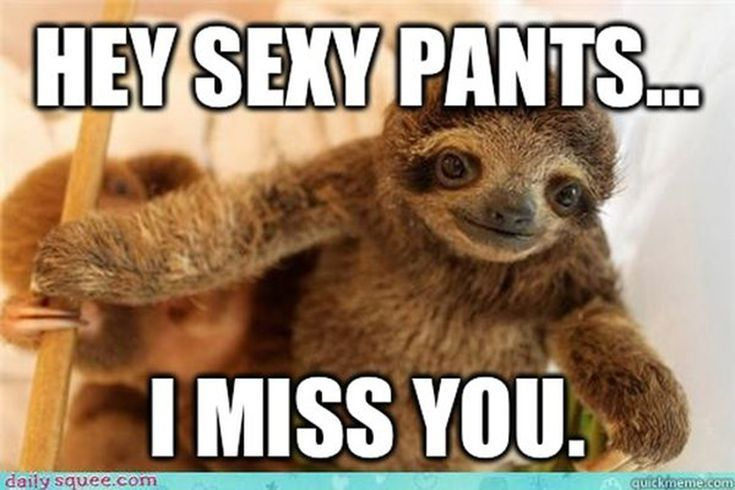 Looking For An I Miss You Meme Here Are The 6 Best Miss You Funny Funny Miss You Quotes Missing You Memes