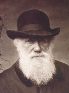 """Charles Darwin   """"It is not the strongest of the species that survives, nor the most intelligent, but the one most responsive to change."""""""