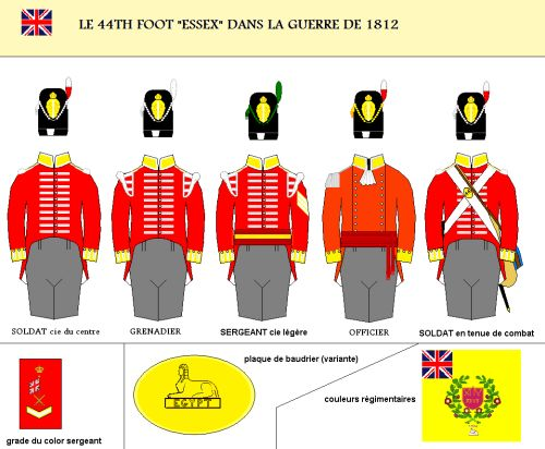 "Le 44th regiment of foot ""Essex ""dans la guerre de 1812"