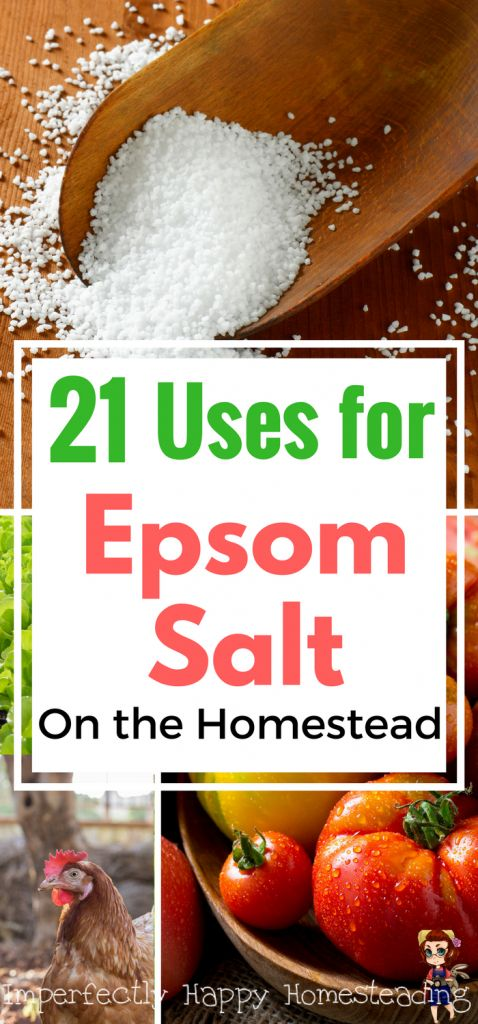 21 Uses for Epsom Salt on the Homestead - for you, your animals, your garden and house! How & Why to Use It.