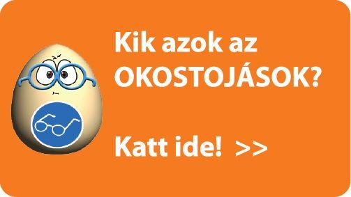 Tanulásmódszertani csomag: Taníts meg tanulni! kézikönyv + Okostojások eszközcsomag   Neteducatio Kft
