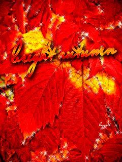 Яркие осенние листья - анимация на телефон №1281935