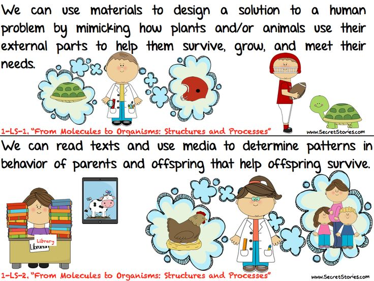 """FREE COMMON CORE SCIENCE STANDARD POSTERS from the """"Secret Stories!""""  (Kindergarten is up now and other grade levels will be posted shortly!)  Be sure to """"FOLLOW"""" on TpT & Pinterest for notification of each grade level set """"FREE DOWNLOAD WINDOW!"""" (www.SecretStories.com)"""