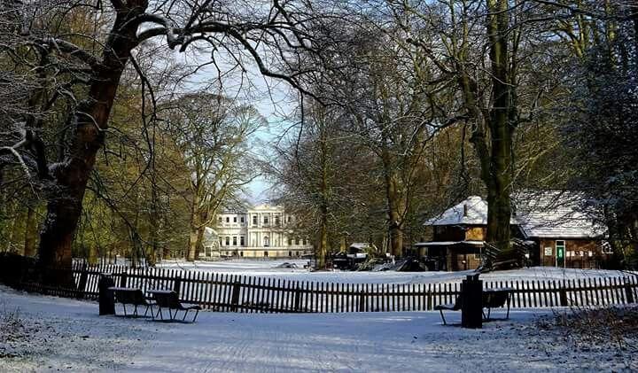 De Hout Haarlem