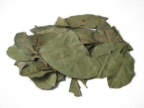 In timpuri stravechi, frunzele de dafin, cunoscut si sub numele de laur, simbolizau intelepciunea la greci si romani, care isi incoronau regii, poetii si
