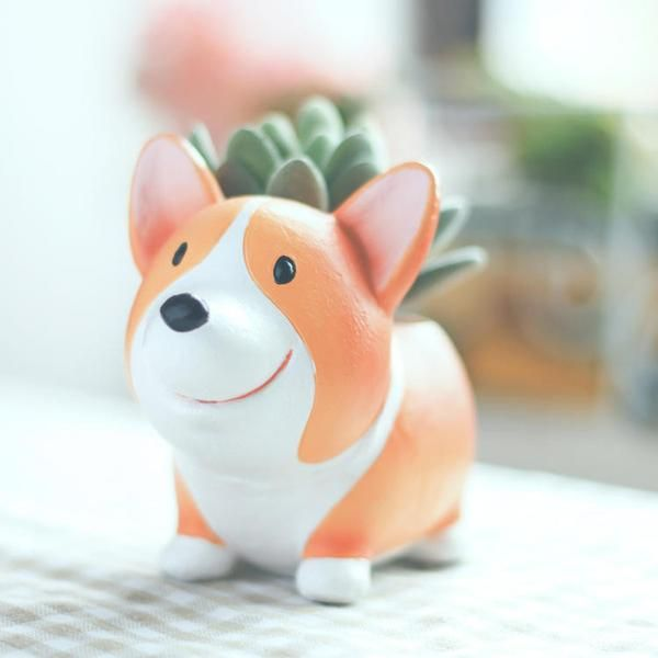 These adorable Corgi planter pots are perfect for herbs, succulents, small flowers, and whatever else you can think of! Made of high quality resin they will last a long time and will not rust or weath