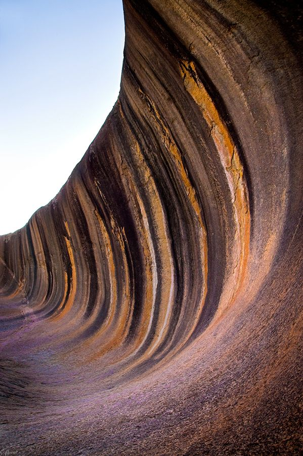 Wave Rock is a natural rock formation located east of the small town of Hyden in Western Australia. The 'wave' formation was formed 60 million years ago and the shape of the rock is not caused by a wave phenomenon, rather its rounded wave-like shape was formed by subsurface chemical weathering followed by removal of the soft weathered granite by fluvial erosion, thus the weathering occurred below ground level before it was exposed.