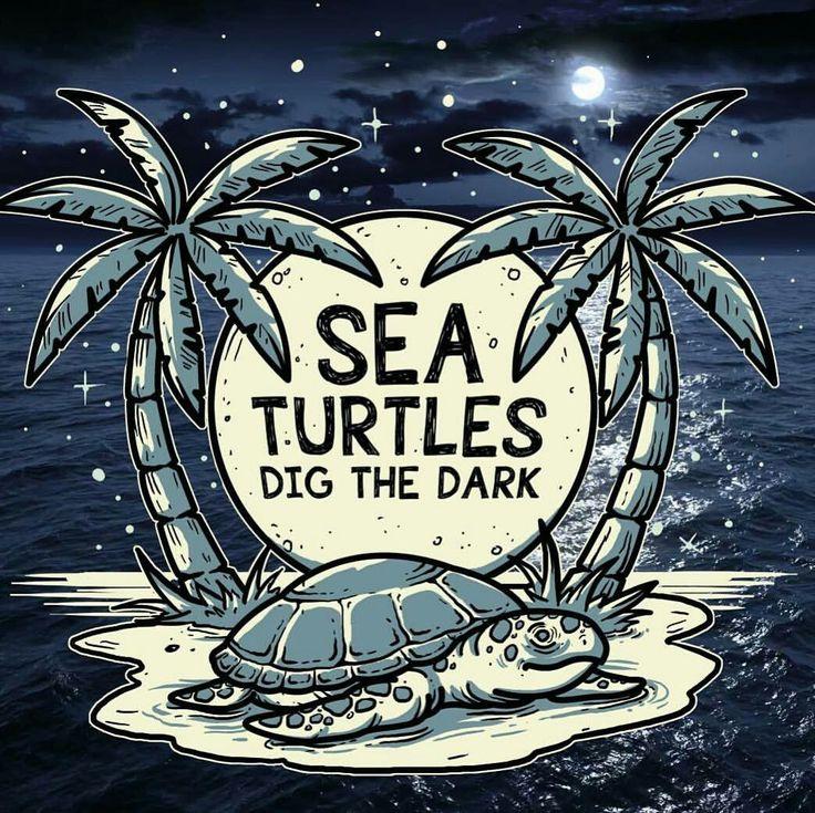 6 Ways You Can Protect Sea Turtles - lighting