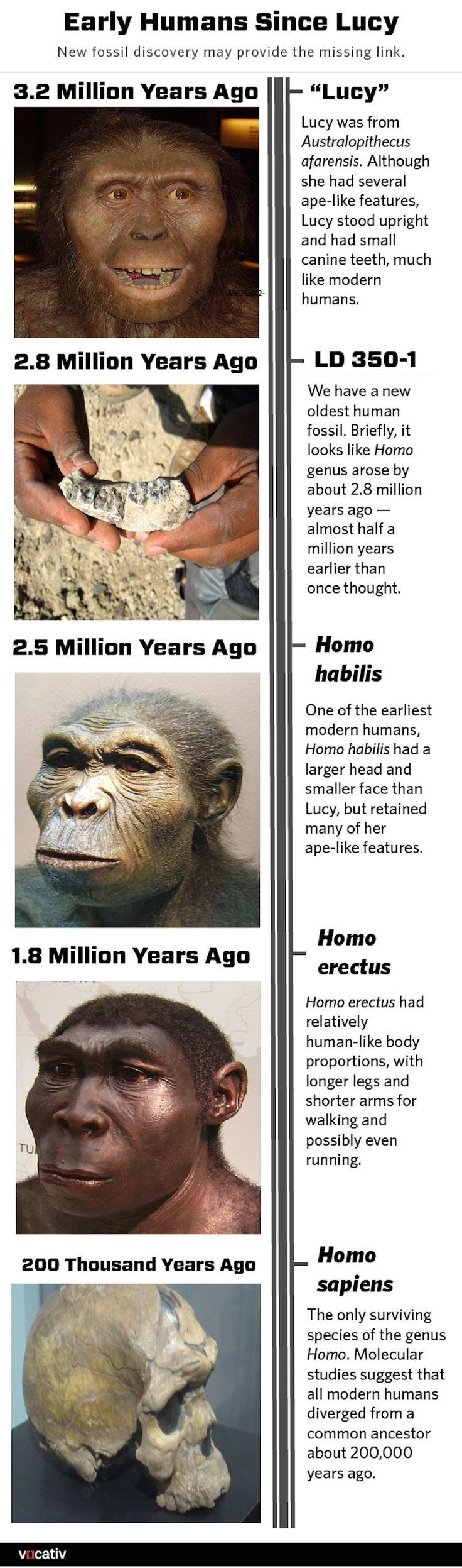 a description of how man evolved the human evolution Fossil links have also been found to support human evolution in early 2018, a fossilized jaw and teeth found that are estimated to be up to 194,000 years old, making them at least 50,000 years older than modern human fossils previously found outside africa this finding provides another clue to how humans have evolved.