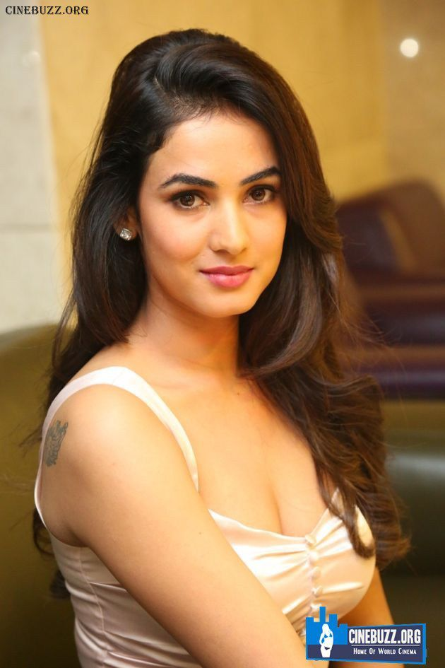 Hot And Sexy Pics Of Actress Sonal Chauhan