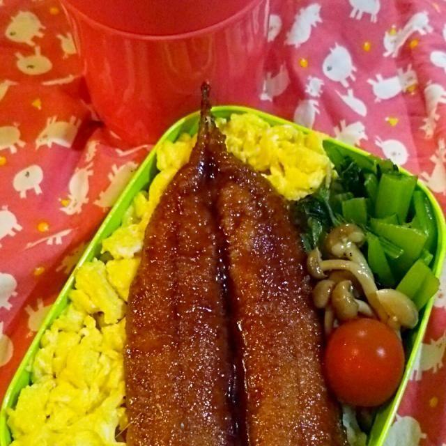 モヤシのお味噌汁 さんまの蒲焼き丼 たまごそぼろ 小松菜のお浸し キノコのペペロンチーノ プチトマト 今日も元気に行ってらっしゃーい(^^)/ - 79件のもぐもぐ - 旦那はん弁当♡58 by hotchoco624661