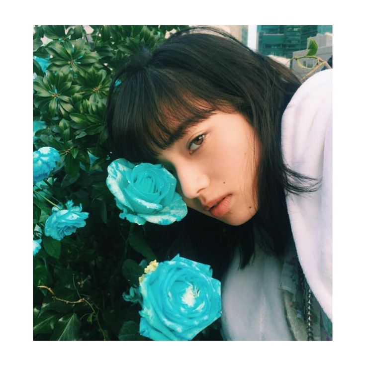 Blue rose 小松菜奈