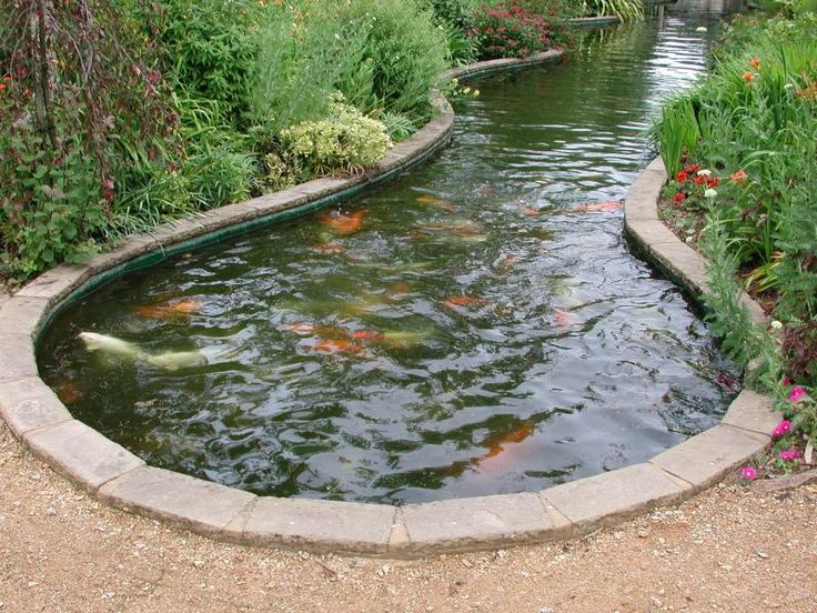 Best 25 Fish Ponds Ideas On Pinterest Pond Kits Pond