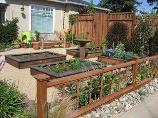 Front Yard Edible Garden Ideas best 25+ front yard gardens ideas on pinterest   front yard tree