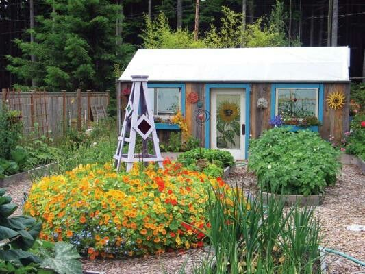 fun garden shed thats also a greenhouse