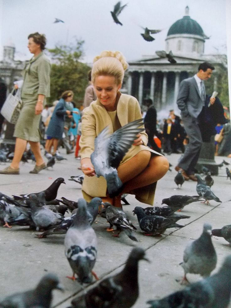 Trafalgar Square, London in the 60s, not many pigeons now since it was made illegal to feed them