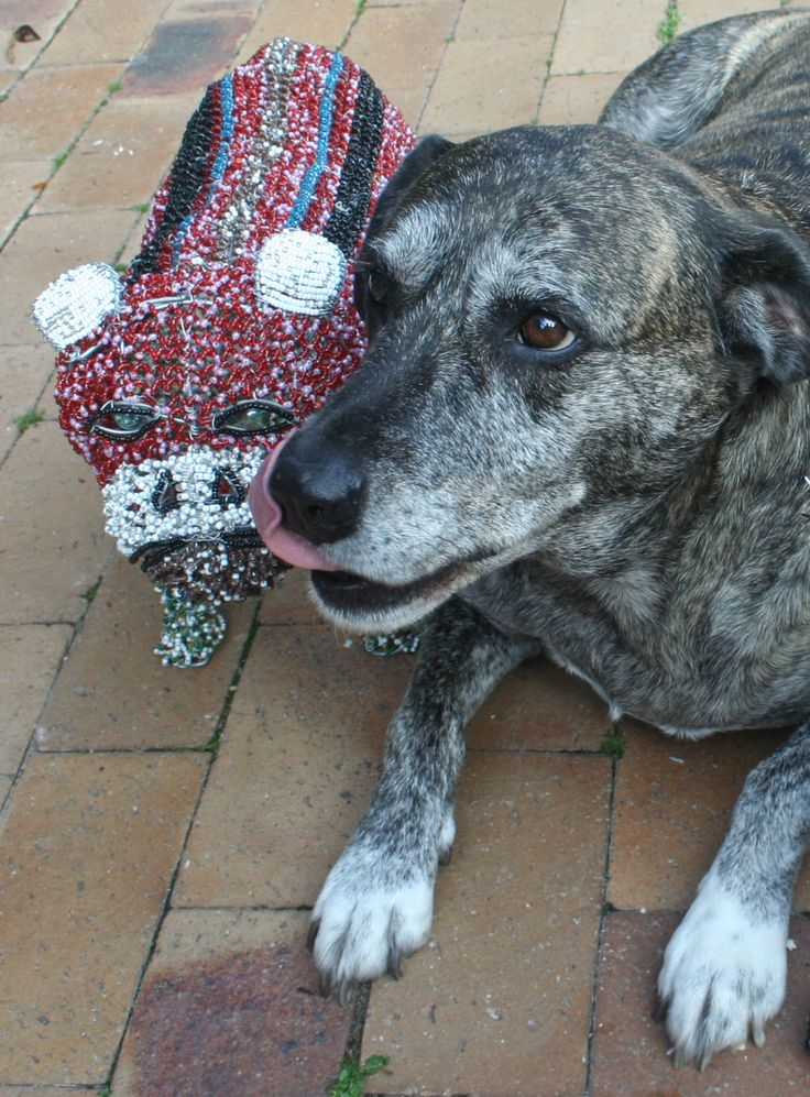 Ginger loves the hand crafted beaded Bulldog!