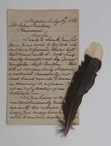 Letter and Huia Feather, William Colenso, A letter written by William Colenso to John Burtton, Kumeroa, addressed and dated Napier, 17 July 1886.